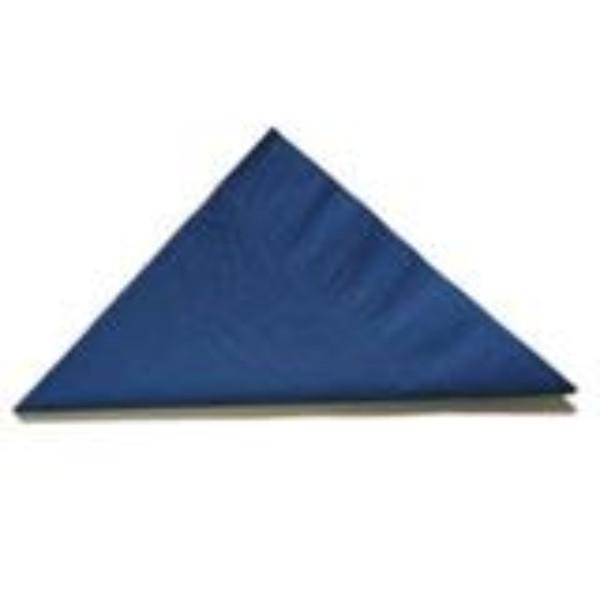 NAPKIN 2PLY LUNCH D/BLUE PK 100 (CTN 2000)