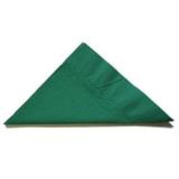 NAPKIN 2PLY LUNCH D/PINE GREEN PK 100 (CTN 2000)