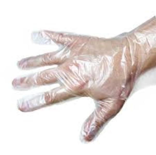 GLOVES PLASTIC LGE (CLEAR) BOX500 (CTN 10,000)