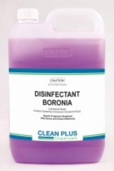 CPD BORONIA DISINFECTANT 5LT