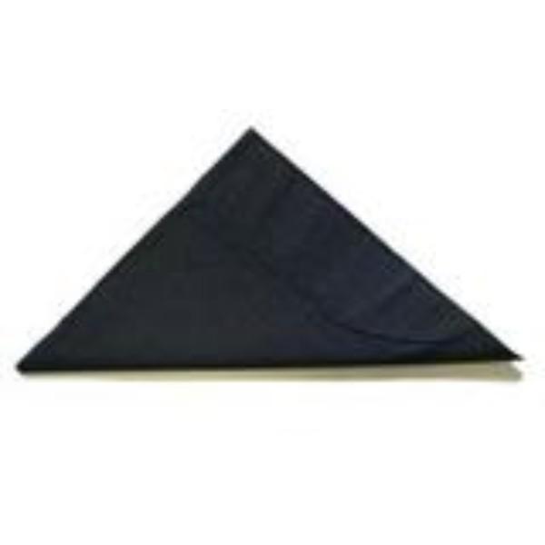NAPKIN 2PLY LUNCH BLACK PK 100 (CTN 2000)