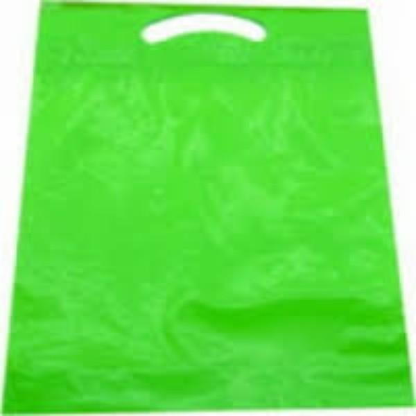 BAG POLY BOUTIQUE SMALL GREEN PK 100 (CTN 1000) 380x255