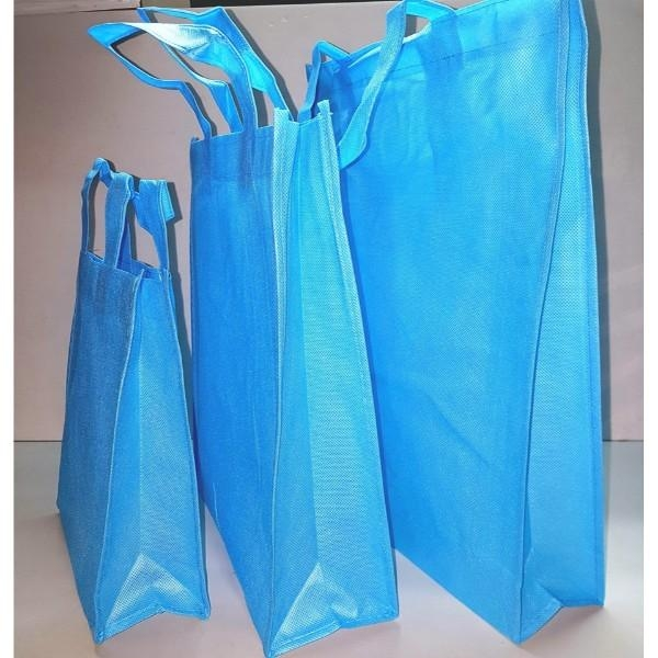 BAG NON WOVEN W/HANDLE MED BLUE EACH (PK12) L28xW10xH33